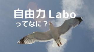自由力Labo
